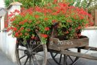 #200 French Flower Cart